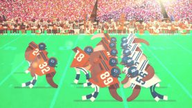 A Guide To American Football