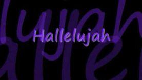Rufus Wainwright- Hallelujah (Lyrics)